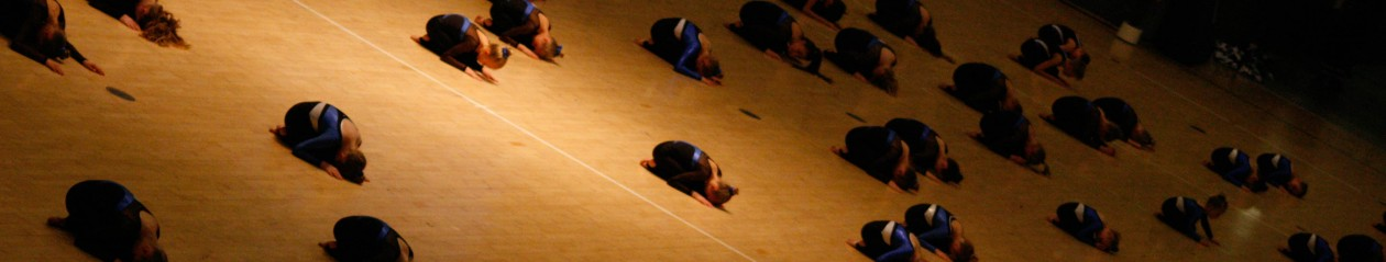 Randers gymnastiske Forenings –  Springhold